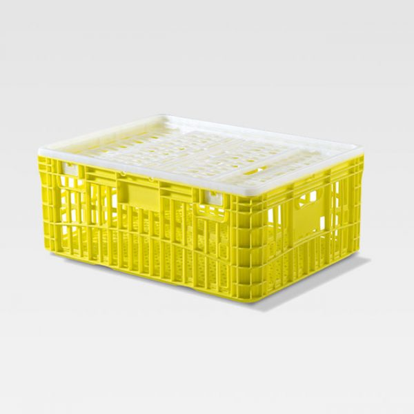 gaiola de plástico 115